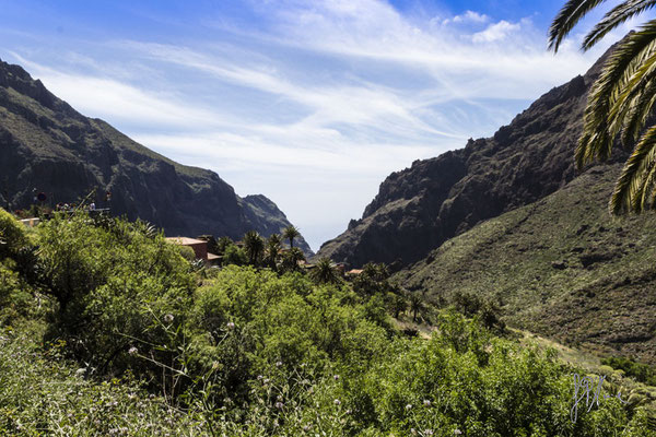 Masca - Tenerife - Isole Canarie  - (2015)