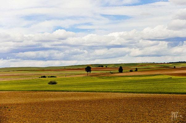 Spagna - Navarra - (2012)