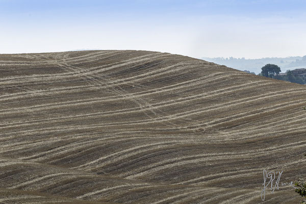 Onde di terra - Crete Senesi  - (2015)