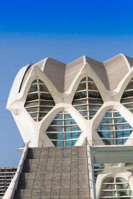 Area Museo delle Scienze