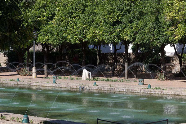 Le fontanelle - Cordoba  - (2014)