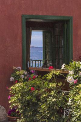 La finestra sul balcone - (Tenerife 2015)