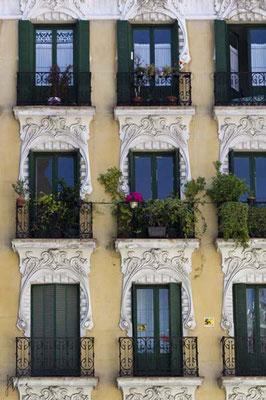 Il vaso di fiori rossi - Madrid  - (2010)