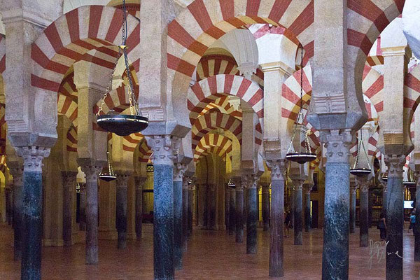 Cordoba - La Grande Moschea  - (2014)