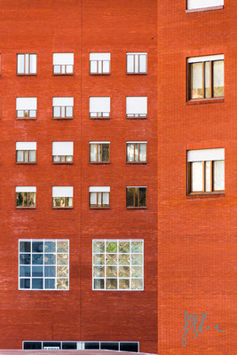 Windows n° 4 - Bilbao  - (2016)