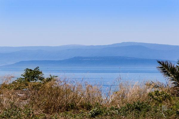 Il promontorio del Gargano visto dall'Isola di San Nicola - Isole Tremiti - (2016)