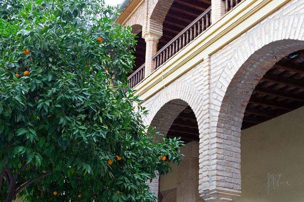 Architettura andalusa  - (2014)