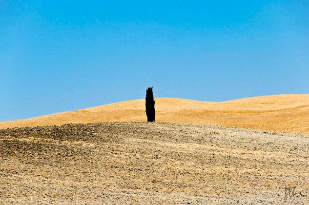 Terra n° 1 - Toscana  - (2012)