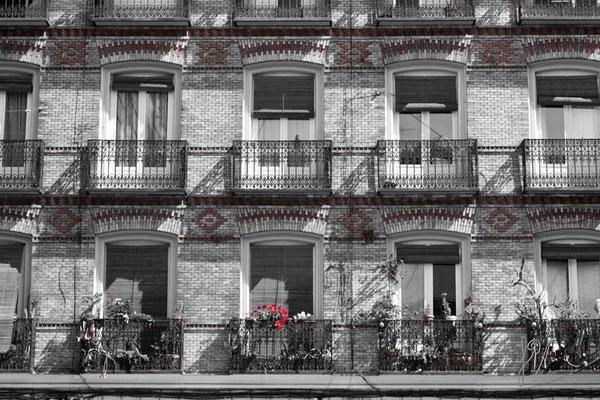 I gerani rossi - Madrid  - (2013)