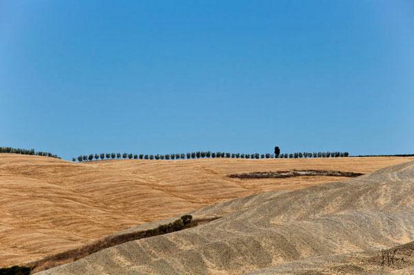 Ritmo n° 5 - Toscana  - (2012)
