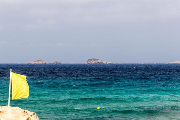 Bandiera gialla - Cala Comte - Ibiza - (2017)