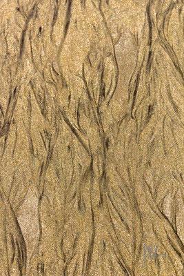 Il linguaggio della sabbia - Gran Canaria  - (2014)