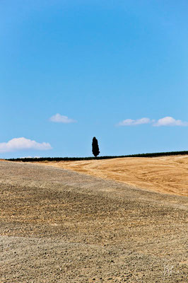 Uno - (Val d'Orcia 2013)