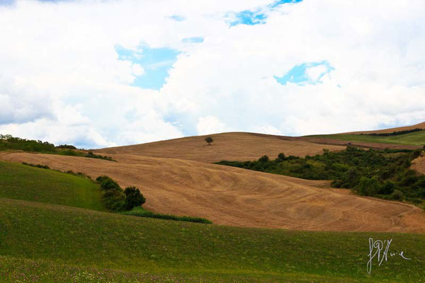 Toscana - Val d'Orcia - (2014)