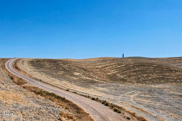 Terra n° 2 - Toscana  - (2012)
