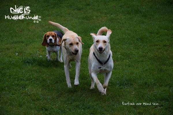 Nanny, Anka & Lola