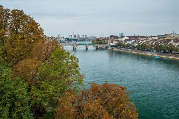 Herbstfarben in Basel am Rhein