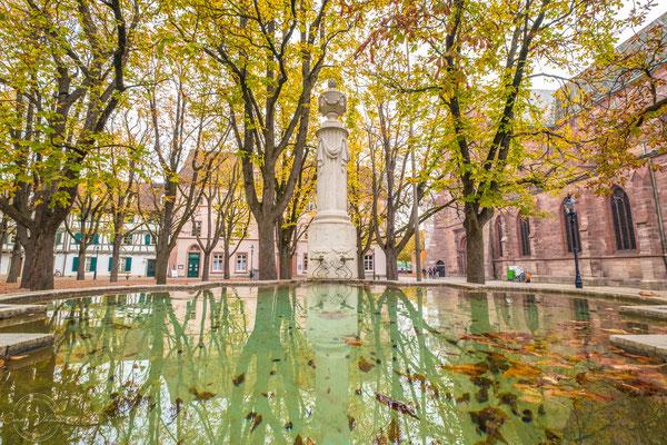 Pisonibrunnen auf dem Münsterplatz in Basel