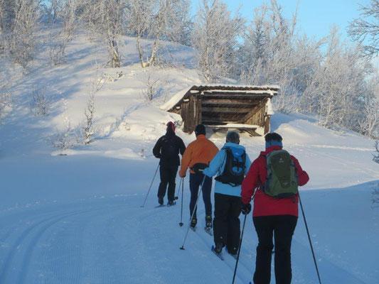 Aktivurlaub-Skilanglauf in Skandinavien geführte Touren...