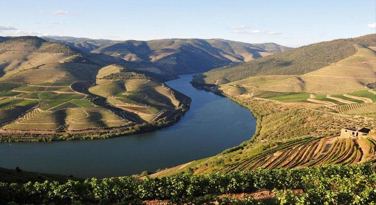 Portugal Douroflusskreuzfahrt Wein und Meer.