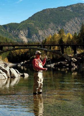 Angeln Sie Ihren Fisch in Norwegen!