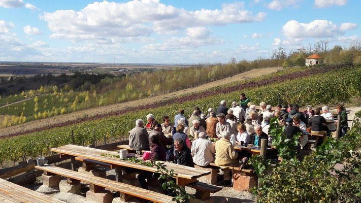 Deutschland Oberlausitz Weinverkostung auf einem ehemaliger Bergbauhang...