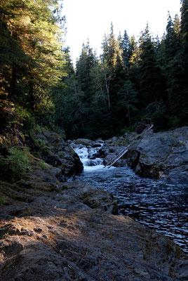 indian creek,olympic natl. park; wa