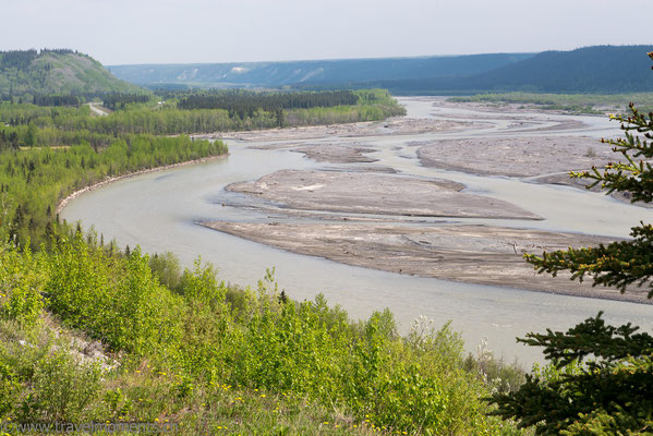 Gakona River