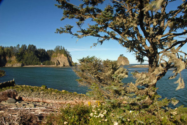 neah bay, makah indian reservation, pacific coast; wa