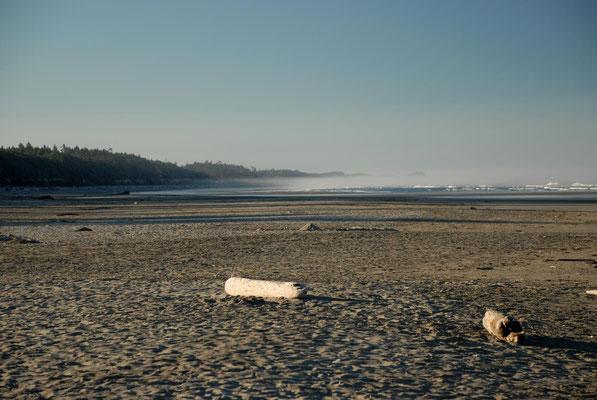 kalaloch, beach 2, pacific coast; wa