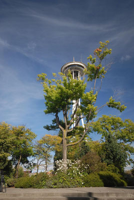 space needle, seattle; wa