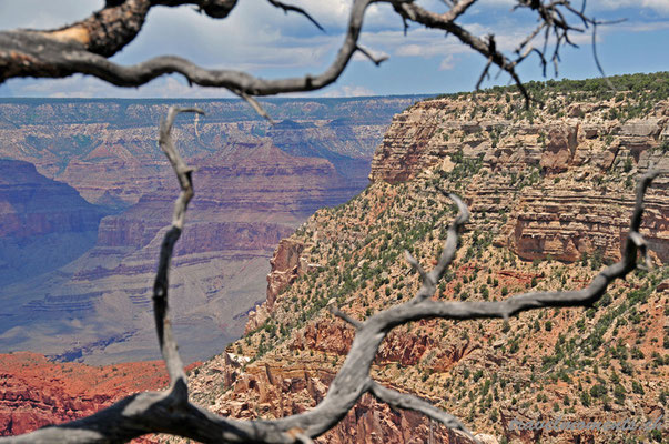 grand canyon national park, south rim; ar