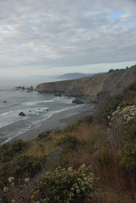 pacific coast, hwy 1; ca