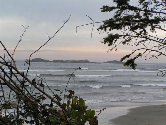 pacific coast, tofino, vancouver island; bc
