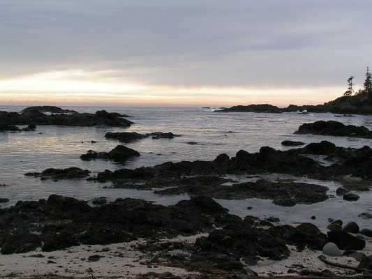 pacific coast, ucluelet, vancouver island; bc