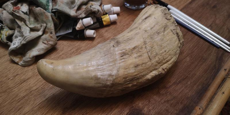 Dent de cachalot (réplique ; originale au Musée africain de Namur)