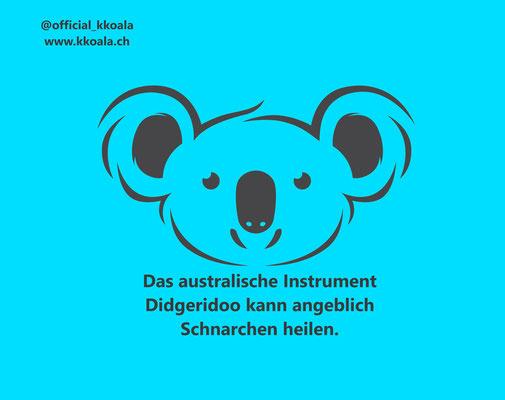 Das australische Instrument Didgeridoo kann angeblich Schnarchen heilen.