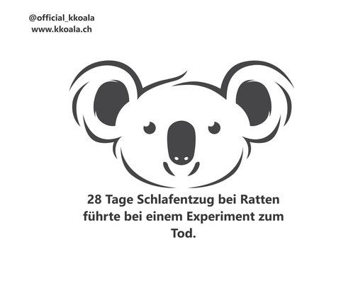 28 Tage Schlafentzug bei Ratten führte bei einem Experiment zum Tod.