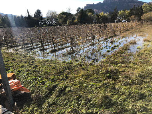 les vignes de palayson