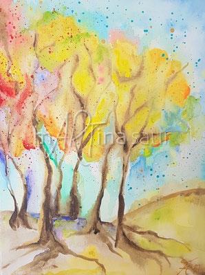 Acousic Art autumn