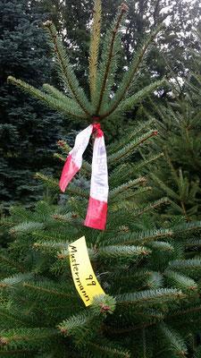 Namenschild gut am Baum befestigen.
