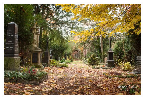 <b>Herbststimmung</b><br> Hauptfriedhof Frankfurt   ©Reiner Gruhle