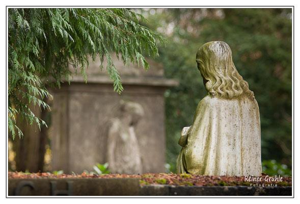 <b>Der Blick</b><br> Hauptfriedhof Frankfurt   ©Reiner Gruhle