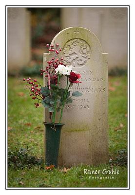 <b>Blumengruß</b><br>    ©Reiner Gruhle