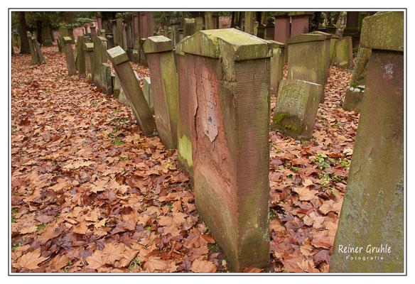 <b>Geneigt</b><br> Alter Jüdischer Friedhof Frankfurt   ©Reiner Gruhle