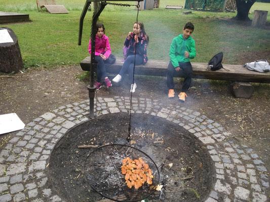Ausflug internationale Klasse Geschwister-Scholl-Schule Konstanz in den Kletterpark Mainau