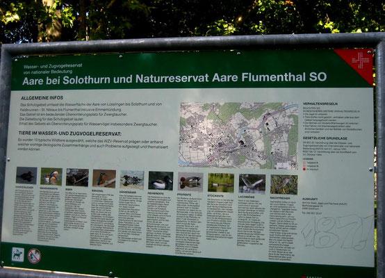 Naturreservat der Aare