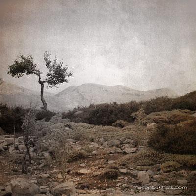 Nida valley, Crete