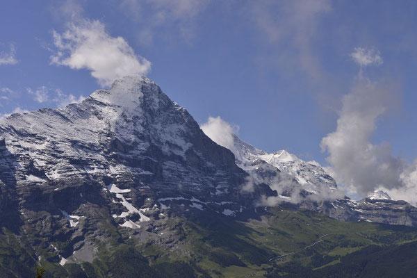170630_1116_Bort-Waldspitz (Eiger)