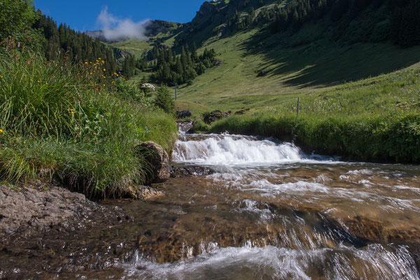 170630_0944-01_Grindelwald Bort-Waldspitz